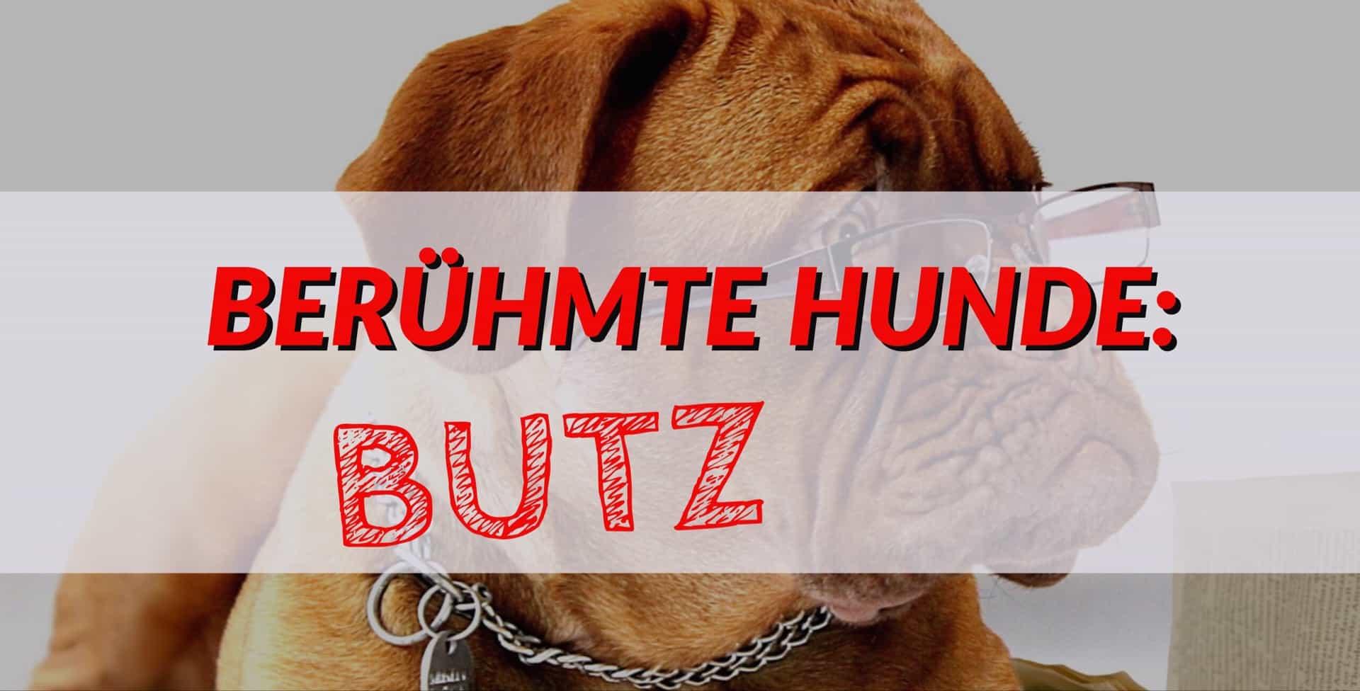 Berühmte Hunde: Butz